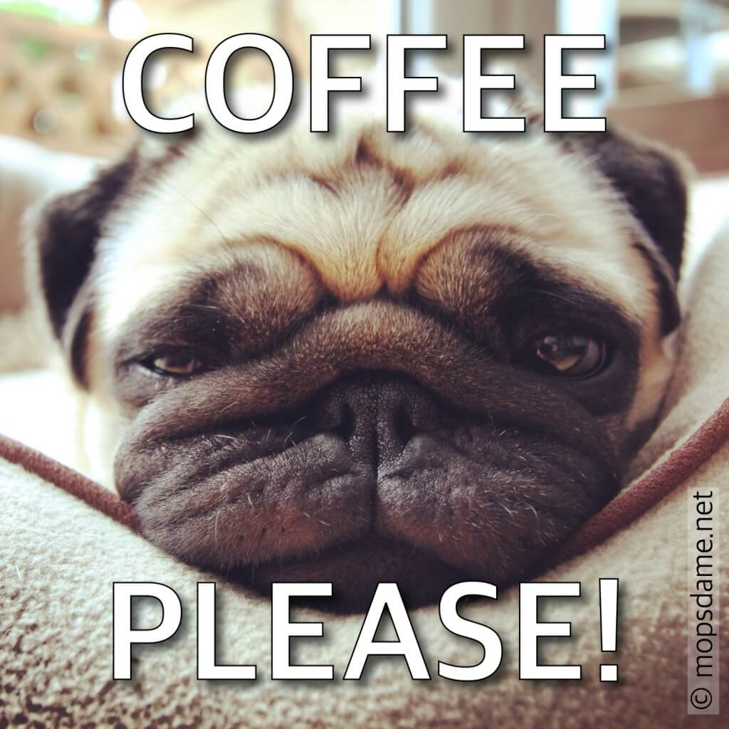 COFFEE PLEASE!